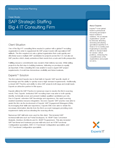 SAP Strategic Staffing: Big 4 IT Consulting Firm